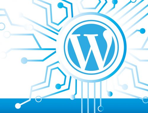 Evaluating If a WordPress Plugin Poses a Risk to Your Site's Cyber Security