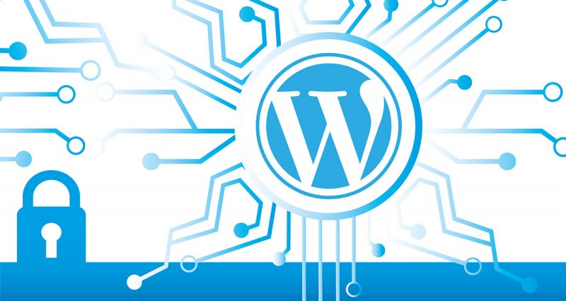 Are Your WordPress Plugins Secure?